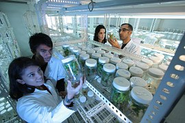 laboratorio farmacéutico