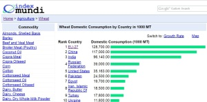los-10-paises-con-mayor-consumo-de-trigo